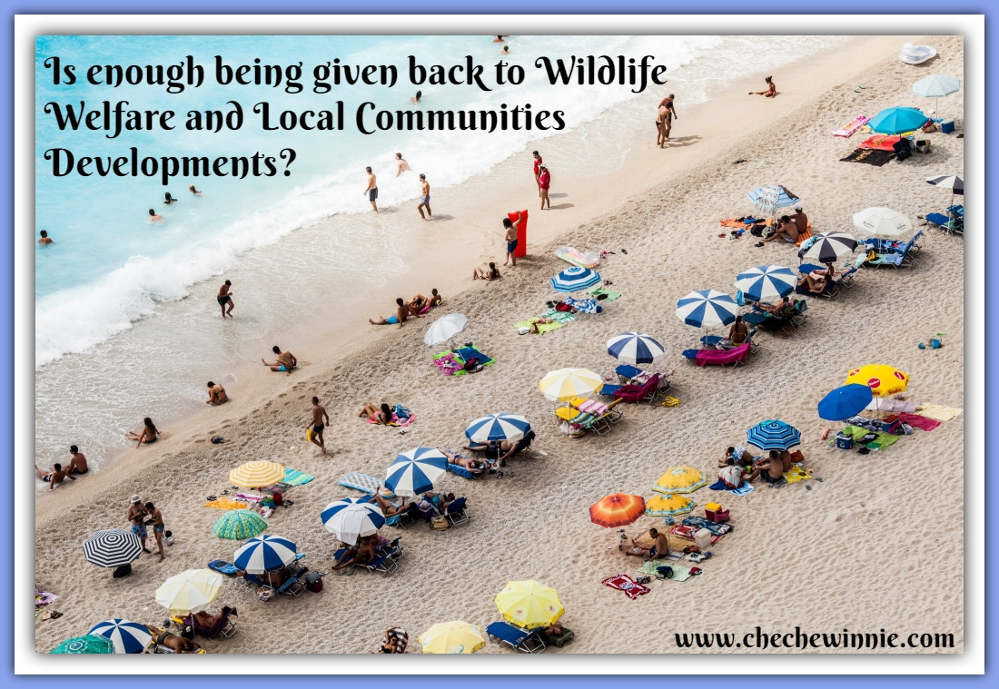 Is enough being given back to Wildlife Welfare and Local Communities Developments?