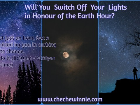 Will You Switch Off Your Lights in Honour of the Earth Hour?