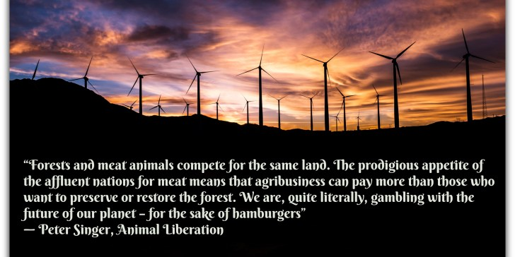 Are we misusing the word Sustainability?