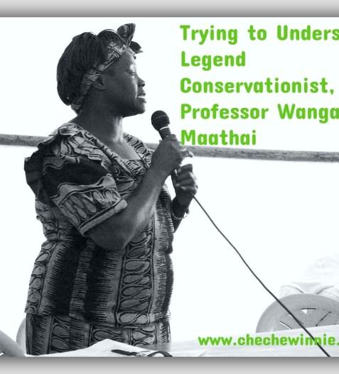 Trying to Understand Legend Conservationist, Professor Wangari Maathai