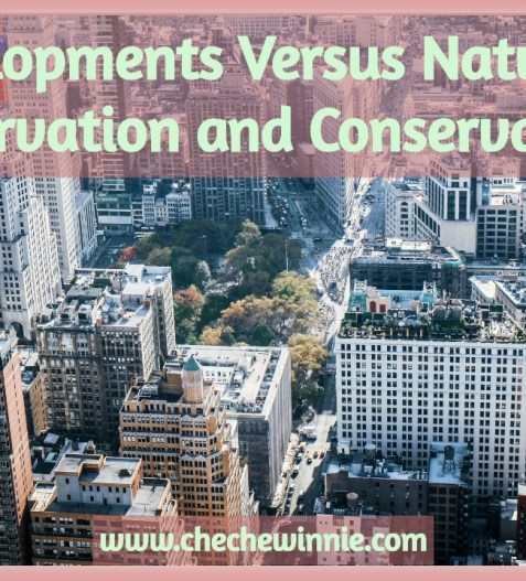 Developments Versus Nature Preservation and Conservation