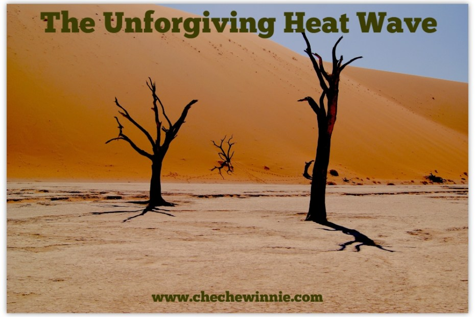 The unforgiving Heat Wave