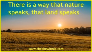 There is a way that nature speaks, that land speaks