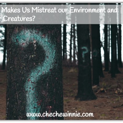 What Makes Us Mistreat our Environment and Other Creatures?
