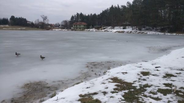 אגם ביוזפוב