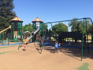 Doerr Park in San Jose, CA