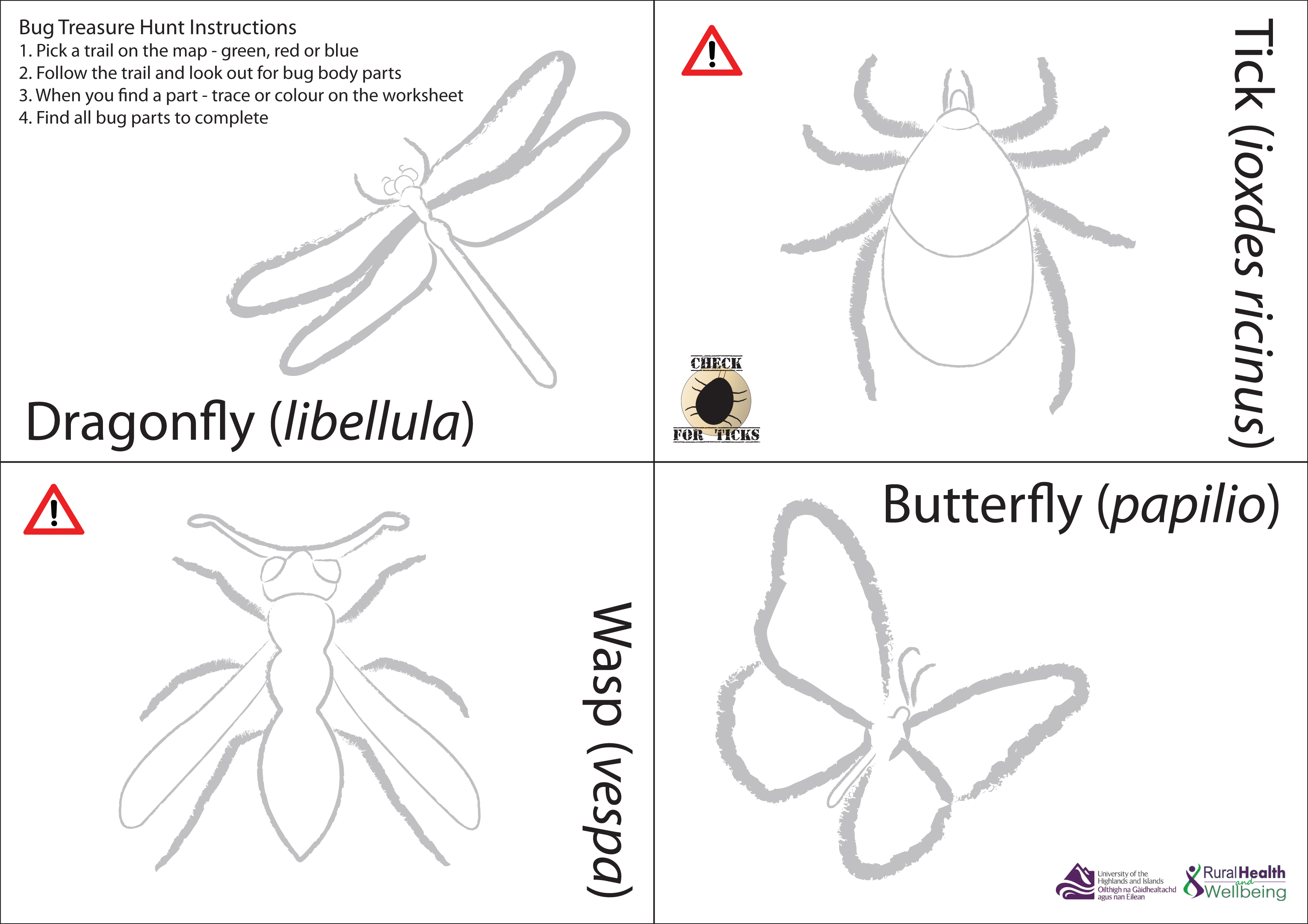 Bug Treasure Hunt Worksheet Check For Ticks