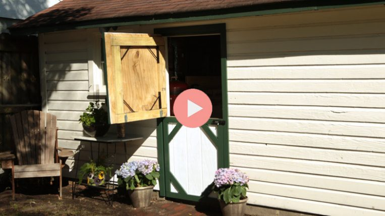 Creating A Dutch Shed Door Checking In With Chelsea