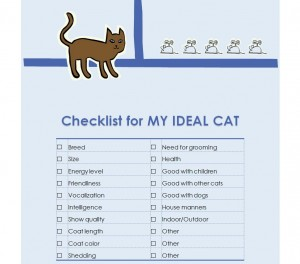 New Kitten Checklist New Cat Checklist
