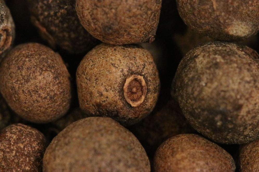 Macro - spices - allspice