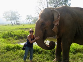 Elephant Sanctuary, Chiang Mai, Thailand