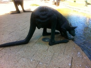 kangaroo sculpture drinking water perth australia