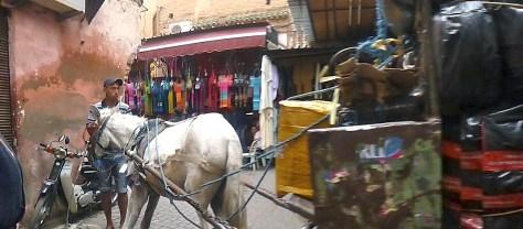 Deliveries via horse in Marrakech Medina