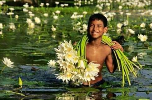 花を集める少年
