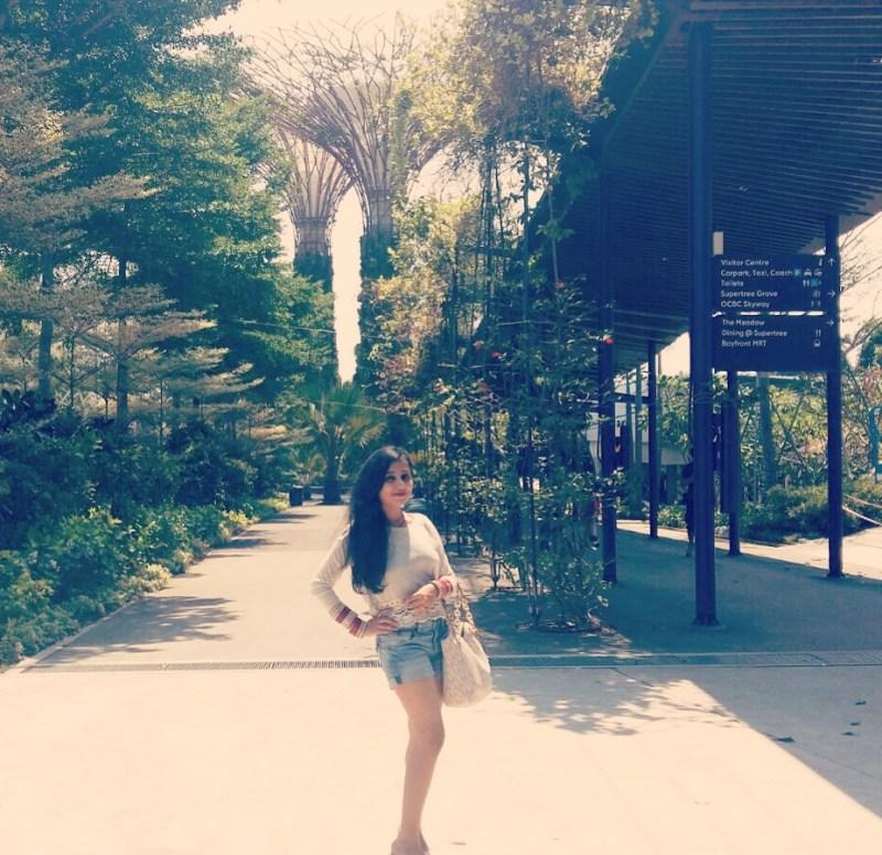 Gardens By The Bay Marina Bay Sands