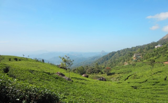 Munnar - Hill Stations In South India