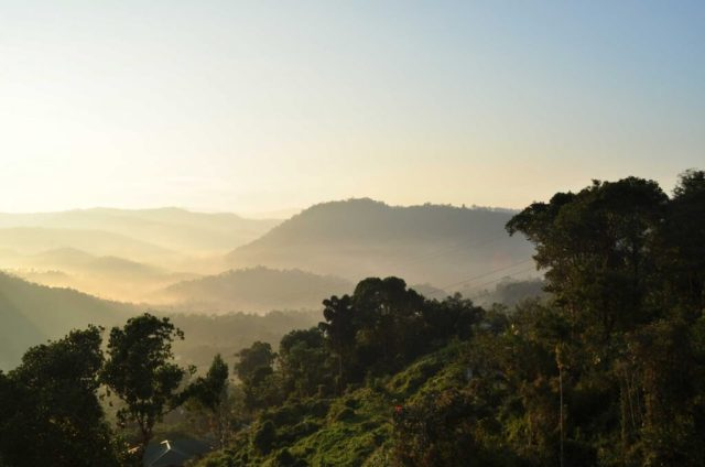 Thekkady - Hill Stations In South India