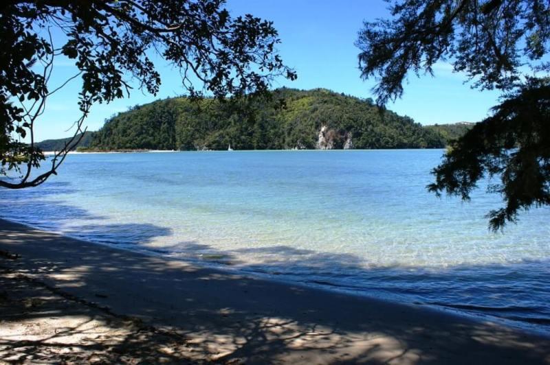 Adele Island, Abel Tasman National Park - Beautiful Islands In New Zealand