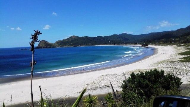 Great Barrier Island - Beautiful Islands In New Zealand