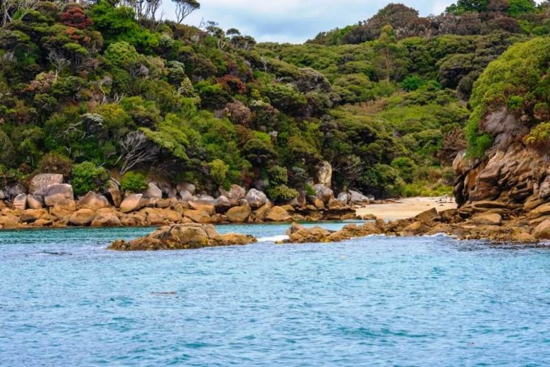 Stewart Island - Beautiful Islands In New Zealand