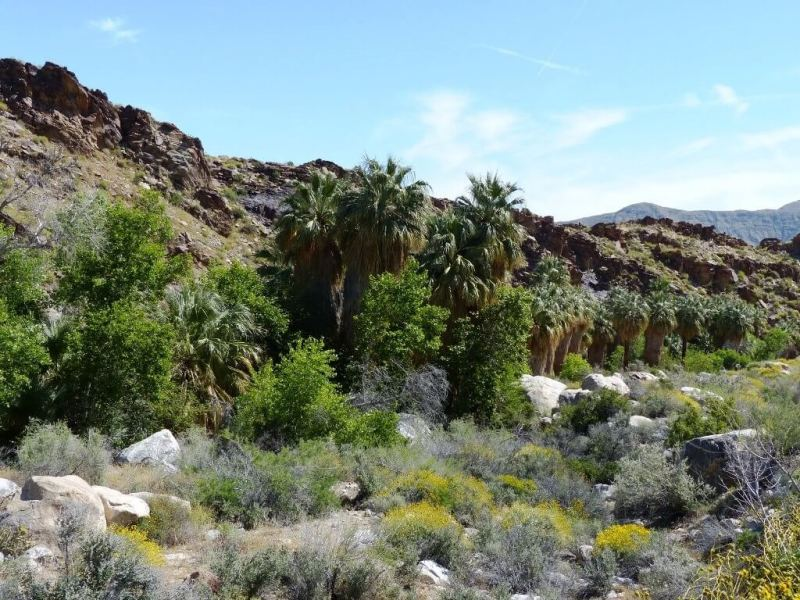 Palm Springs - Weekend Trips From Los Angeles