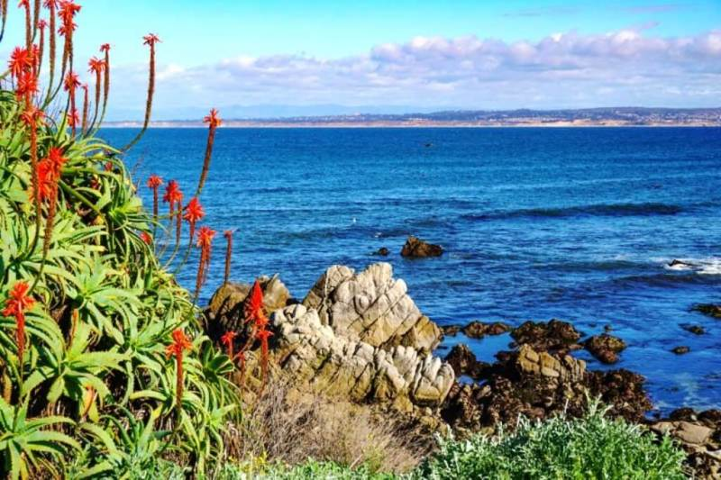 Pacific Grove - Beautiful Small Towns In California