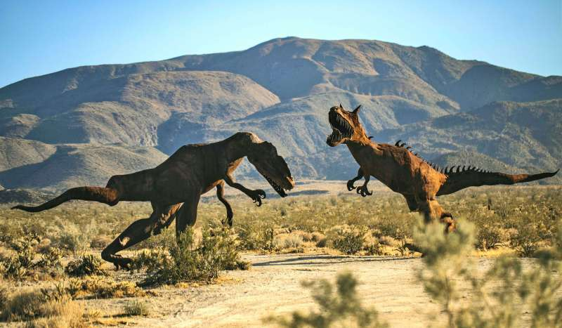 Anza-Borrego Desert State Park - California With Kids
