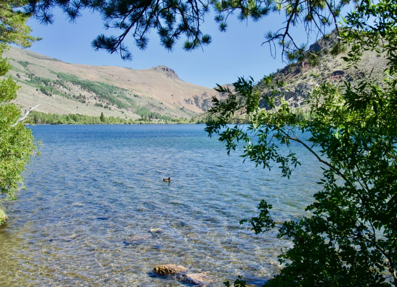 Mammoth Lakes - California With Kids