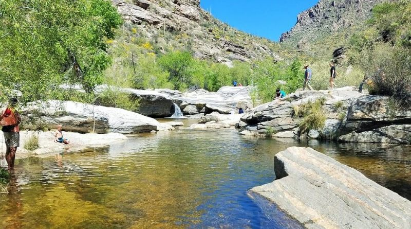 Sabino Canyon - Things To Do In Tucson With Kids