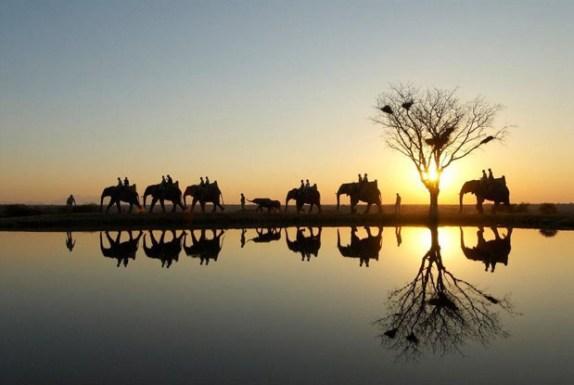 Africa do sul Cinqtours para Cheers