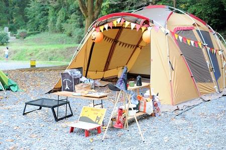 camp201511
