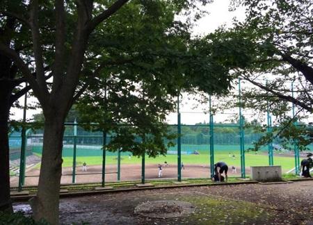 wadabori-park12