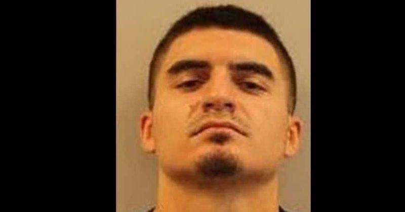 Matthew Savinovich: hombre de Nueva Jersey mata a los 3 perros y al hurón de su ex amante y enfrenta 5 años de prisión