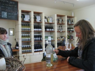 Vinery in McLaren Vale