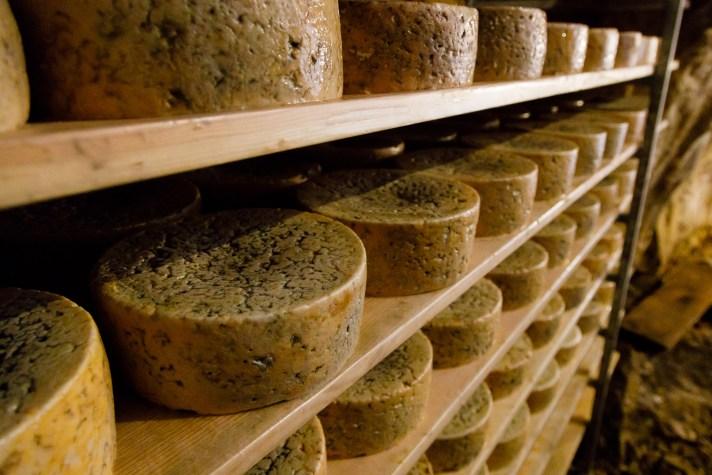Wisconsin Cheese Originals Basque Tour