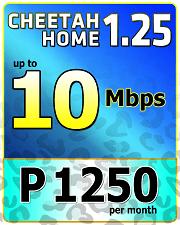 Cheetah Home 1250-1.png