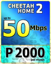 Cheetah Home 2000-1.png
