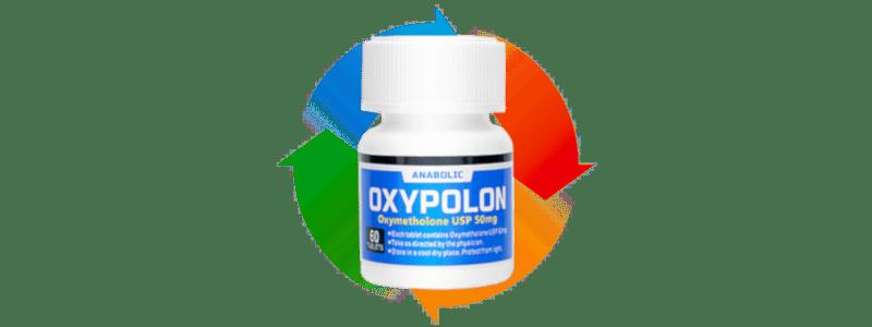 オキシポロンの筋肉に効果的なサイクル方法まとめ