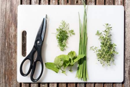 10 Uses for Kitchen Shears