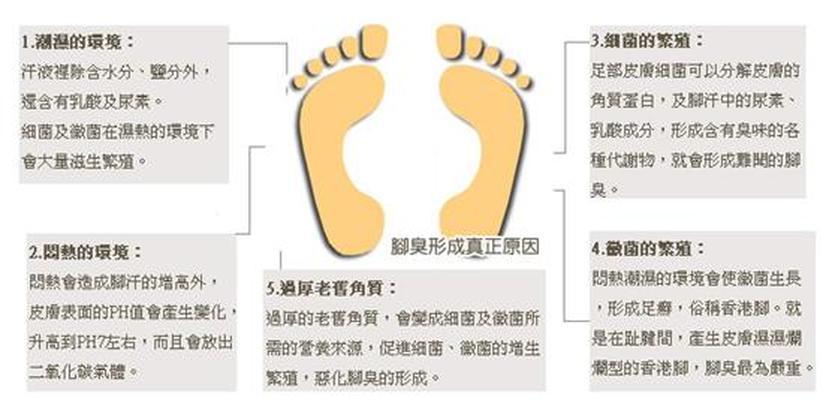 腳臭腳汗怎麼辦?有效解決腳臭方法大公開 - 腳臭腳汗怎麼辦?有效解決腳臭方法大公開