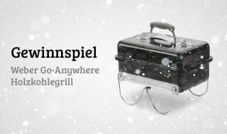 Weber Go-Anywhere Holzkohlegrill