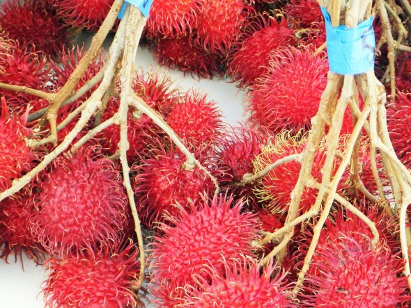 Rambutans at the Koloa market in Kauai, Hawaii.
