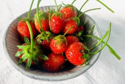 20210426-strawberries