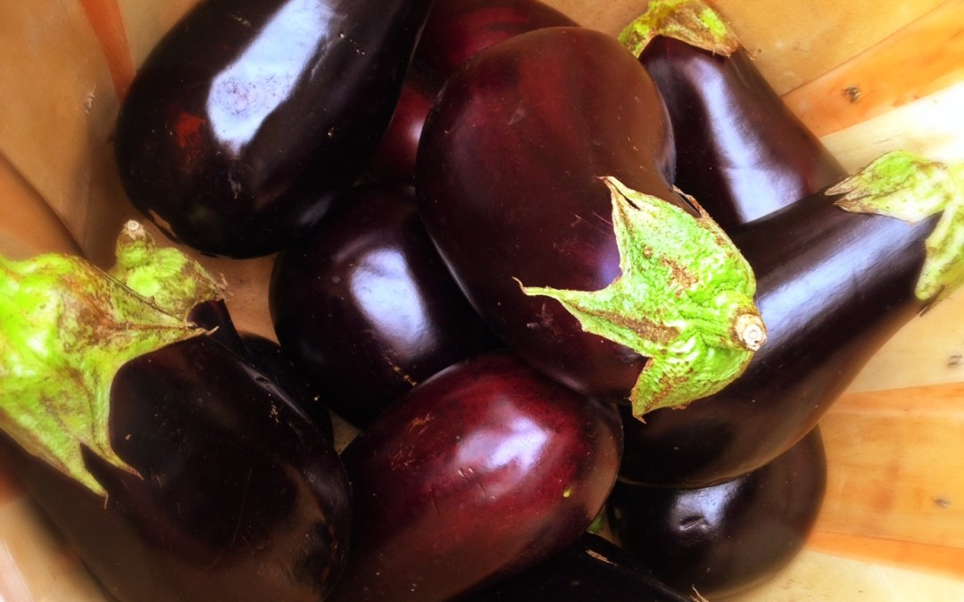 Pick the Perfect Eggplant