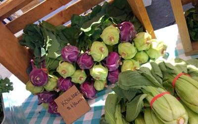 The NEW Eastchester Farmer's Market
