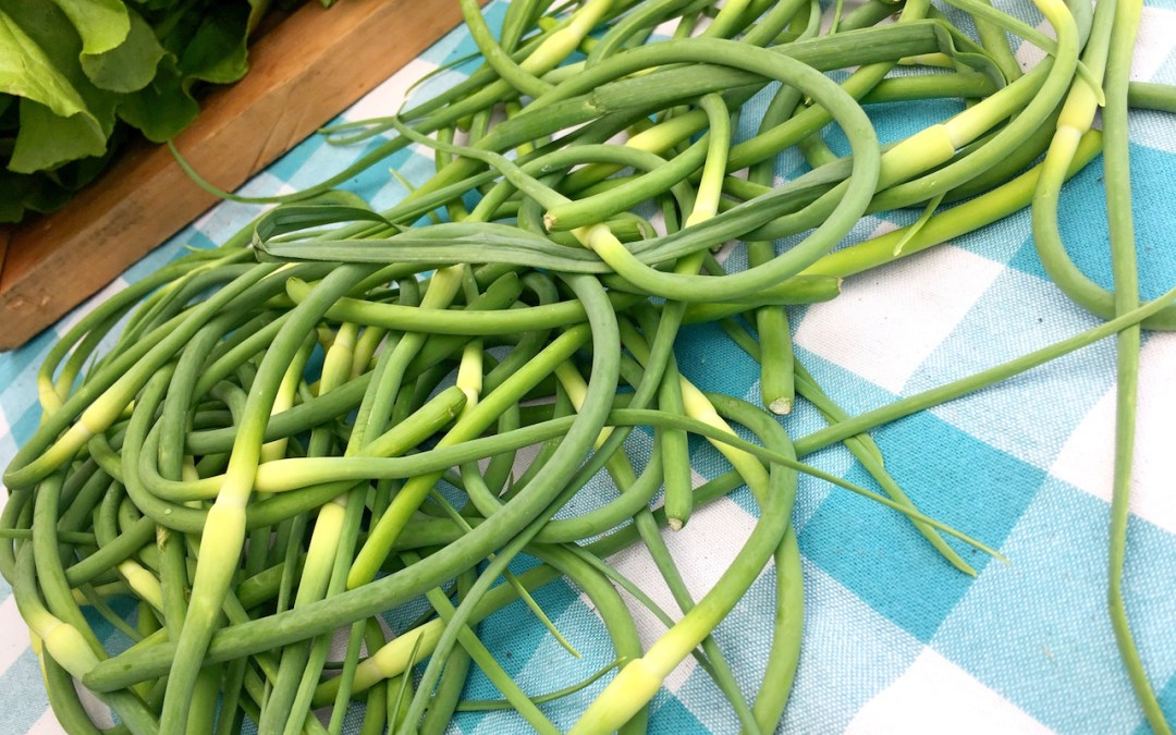 Garlic Scapes Seasoning Puree
