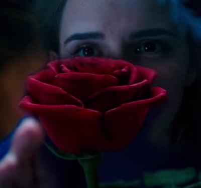 Status: já amando o novo filme de A Bela e a Fera [ATUALIZADO]