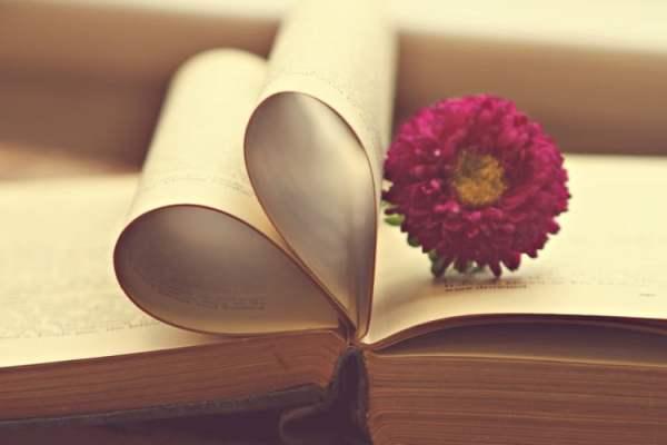 Livros: Minha louca obsessão
