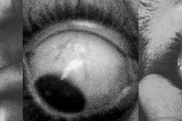 Os olhos de um monstro
