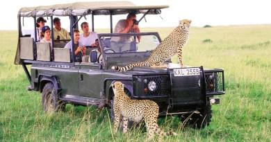 В нацпарке ЮАР туристам запретили ставить геотеги на фото в соцсетях